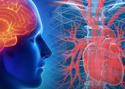 Medical Physiology Online